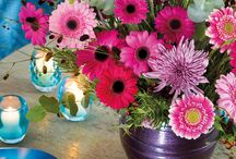 Belle Bohame /  Small pink gerbera bouquets in different size vases for endless inspiration!