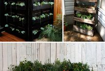 Recycled / Items to recycle