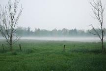 Nebelschwaden 05 | 2012 / Der Nebel stieg in den Abendstunden sehr langsam aus den Wiesen empor. Kalt wurde es. Alles war feucht, als es dunkel wurde. Dann war alles dunkel, auch der Nebel.
