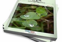 #microsarjan / Publisher & Editor of Gujarati Microfiction stories.