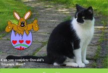 Oswald's Spring Fling - 13th April 2016 / Images from our children's event