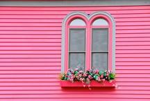 Colour inspirations MAGENTA