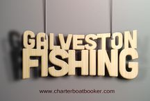 Galveston Fishing Charters / Charters geared towards catching these beautiful creatures. Anglers need not worry about bringing all their gear because it will be provided for you. Hop over to this website https://www.charterboatbooker.com/location/united-states/texas/galveston-fishing-charters/ for more information on Galveston Fishing Charters.