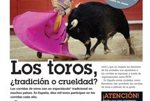 toros- discusión