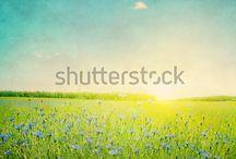 Smukke Billeder