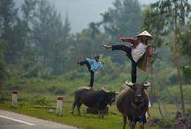 Vietnam mood