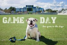 Game Day / Go Bulldogs! / by The Citadel