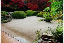 Garden / Garden, courtyard, minimal, zen, calm, serene, japanese