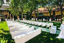 Hochzeit Freie Trauung