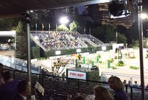 Rolex Horse Show NY / Equiline was a proud sponsor of one of the best equestrian events of the year: the Rolex Central Park Horse Show.
