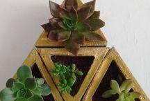 Vasos de cimento / Concret planter