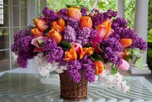 Florals / by MaryJane Richardson