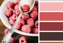 Color Palette Inspiration / Color combinations for designs