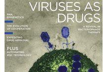 Virus / Everything about viruses
