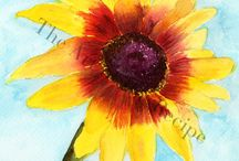 Florals / Original watercolor illustrations