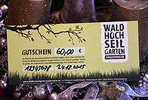 im Waldhochseilgarten