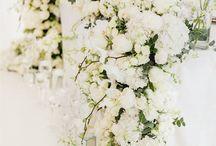 flowers by Zavion Kotze