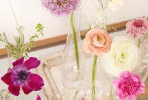 Plants, flowers ❤️