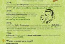 Cannabis Facts / The truth about cannabis || www.Weedist.com / by Weedist