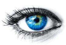 Eye Health / Regular eye exams reveal vision problems like nearsightedness, farsightedness, presbyopia, and astigmatism. Your doctor may prescribe glasses or contact lenses. Eye conditions include pinkeye, blepharitis, glaucoma, cataracts, and macular degeneration. / by Issac Fish