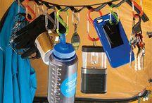 essentials of a festival