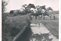 "The Steeplechase / Steeplechase racing, ideas for my novella ""The Steeplechase"""
