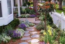 Reno my Front Garden Please!
