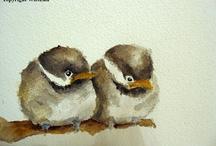 Watercolor FUGLER / Fugler malt med akvarell