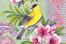 kuş lar