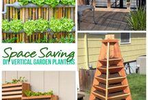Garden: Raised Beds / Vertical gardening