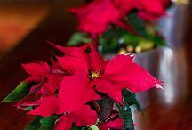 Christmas-God jul