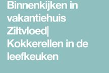huisjes in NL