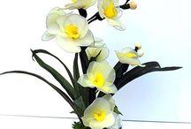 harisnya virágok