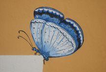 Vlinders diversen