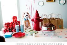 brownstone bakery for dogs / by Laura Doty-Aivaz
