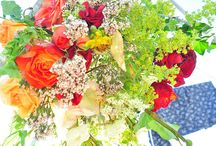 Roses / roses generally