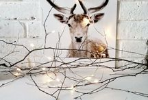 Christmas // Winter ♡