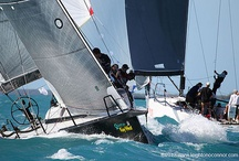 2012 Key West Race Week (Sailing Regatta) / A favorite regatta for me every year. Must be the palm trees and turquoise water.