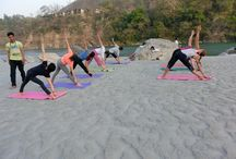 Yoga Teacher Training / Keep in touch to read great articles and news on yoga teacher training.
