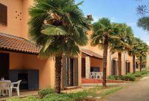 Vakantiehuizen Istrië / Op dit bord tref je een aanbod van vakantiehuizen in de regio Istrië te Kroatië aan. Deze zijn veelal online via onze website Recreatiewoning.nl te boeken. Het huuraanbod op onze site is afkomstig van zowel particulier als zakelijke verhuurders.