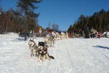 Québec, l'hiver en Mauricie / Une idée d'évasion pour l'hiver : le Québec. La Mauricie offre des paysages à couper le souffle et des activités fantastiques