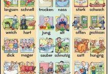 Deutsch! / Do abc alemão até as declinações :D