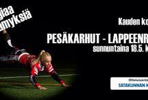 Pesäkarhut vs. Lappeenranta  18.5.2014 kello 18.00 / Pesäkarhujen 20. pääsarjakausi käynnistyy torstaina 15.5 Vihdissä ja ensimmäinen kotiottelu sunnuntaina 18.5. kello 18.00.