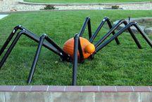 Halloween / by Lisa Edgerton