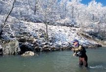Missouri Fishing / Missouri has some of the best fishing in the nation. Find great fishing spots near you! / by Missouri Conservation