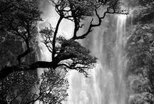 Landscape and Nature Inspiration