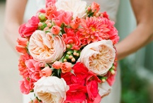 Coral Weddings / Wedding theme, inspiration and ideas