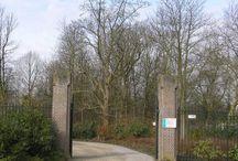 Begraafplaats Krommenie