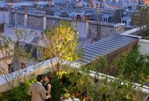 na dachu Paris