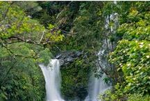 Maui Hawaii Travel Tips